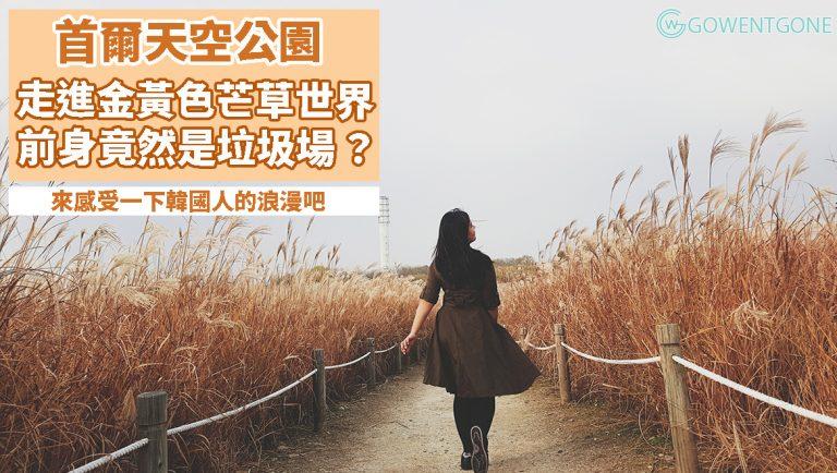垃圾填埋場搖身一變,成為詩情畫意的天空公園!首爾市內看芒草遍野,走進金黃色的世界,感受韓國人的浪漫吧!