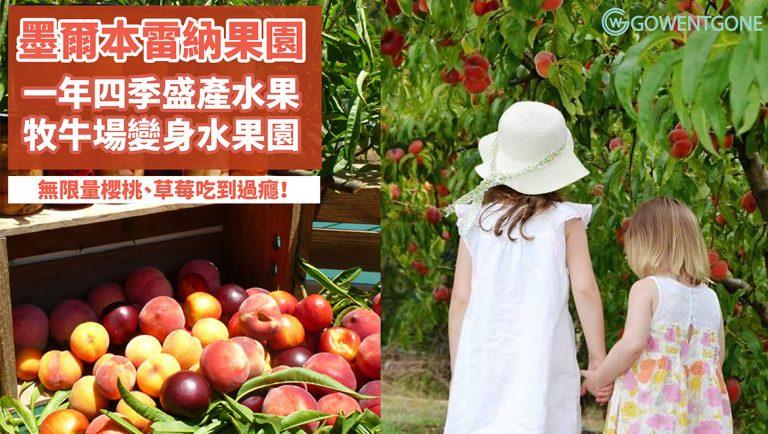 親愛的我把牧牛場變果園了!墨爾本Rayner's Orchard果園,一年四季出產四百多種水果!墨爾本農場攻略,無限量櫻桃、草莓吃到過癮!