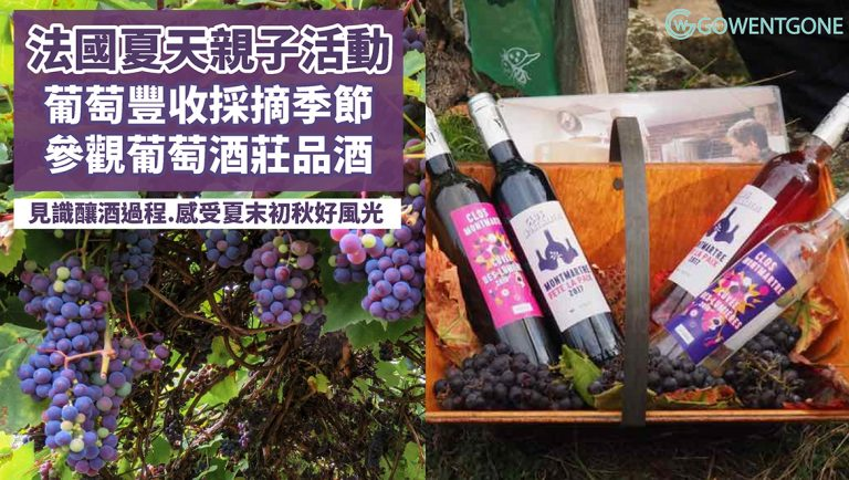 法國夏天必玩!法國葡萄豐收親子活動,參觀酒莊兼品酒,見識充滿古風的製酒過程,感受夏末初秋好風光!