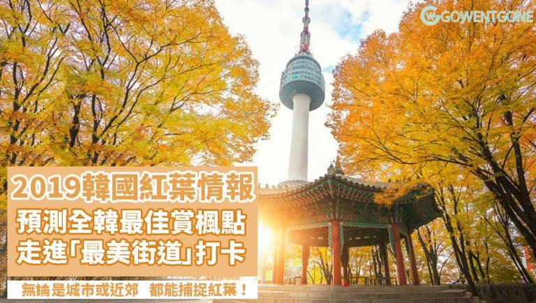 2019韓國紅葉最新情報!!預測全韓最佳賞楓景點,首爾市、近郊、濟州島……全都能捕捉紅葉的踪影,超壯麗呢!