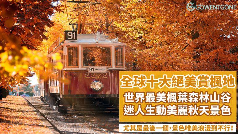秋季賞楓不只有日本和韓國,還有這些意想不到的地方,尤其是最後一個,景色唯美浪漫到不行!一次過目睹全世界十大最美的賞紅葉絕景之地,錯過又要再等一年了~