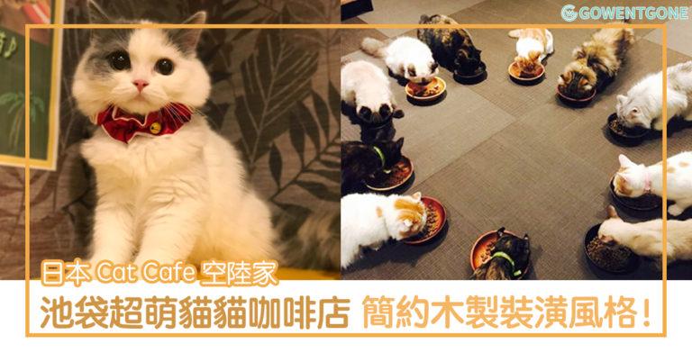 Cat Cafe 空陸家 — 池袋貓貓咖啡店〡超療癒可愛的小貓,簡約木製風格的小房間,這裡竟然還有不同類型的漫畫,非常寫意呢!