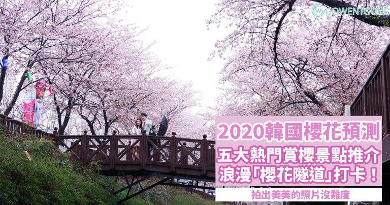 2020韓國櫻花預測〡五大首爾、釜山熱門賞櫻景點,浪漫「櫻花隧道」,拍出美美的照片!