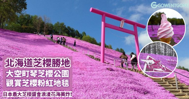 日本除了櫻花,還有這種花!北海道「東藻琴芝櫻祭」日本國內最大規模芝櫻盛會,紅、白及粉紅芝櫻交織綻放,燦爛的煙火盛會,浪漫花海美炸了!