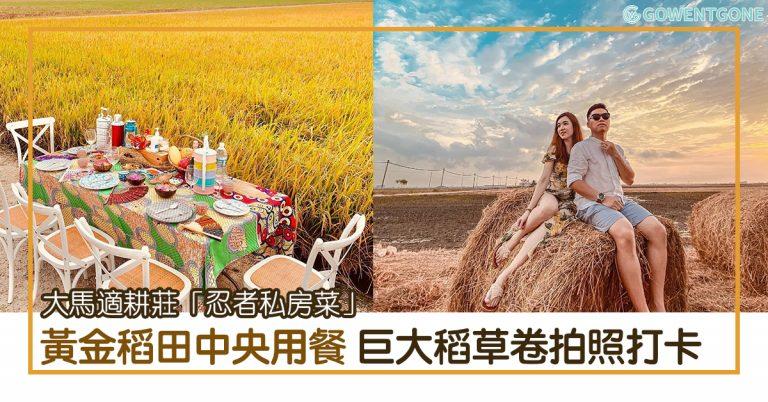 馬來西亞適耕莊還能這樣玩! 「忍者私房菜」黃金稻田中央用餐體驗,巨大稻草卷奇景拍照打卡,一望無際的稻田留下最美的假期回憶~