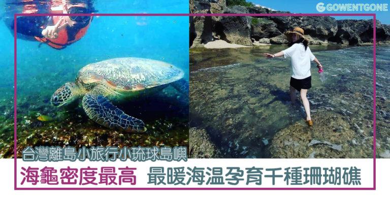 小琉球浮潛百分百能看到海龜!全台最暖海温、世界海龜密度最高的小琉球島嶼,台灣離島小旅行,非小琉球莫屬!